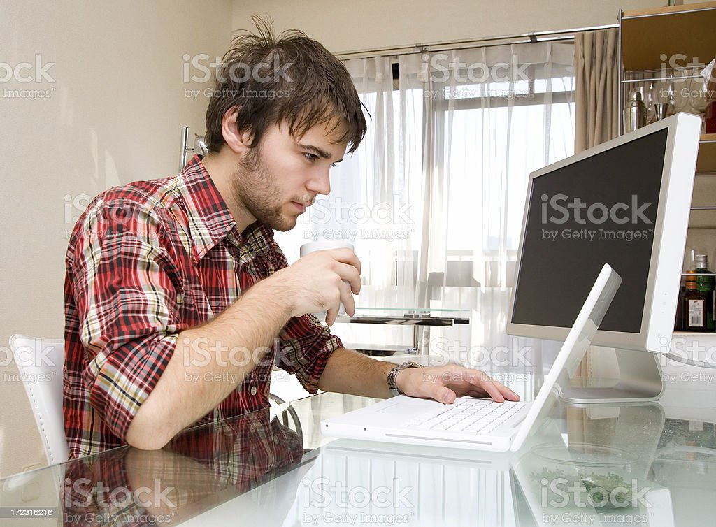 Young guy surfing the net royalty-free stock photo