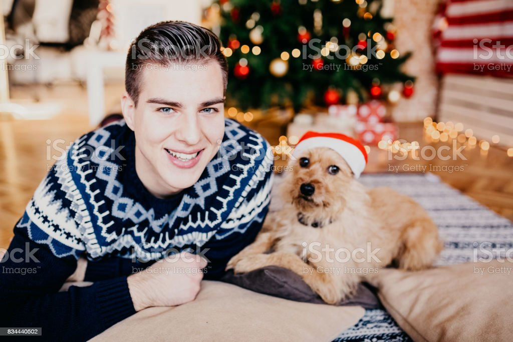 Young handsome man with his dog posing in front of a Christmas tree stock photo