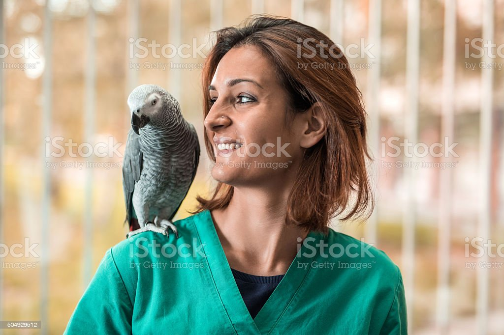 Young happy veterinarian with a parrot on her shoulder. stock photo