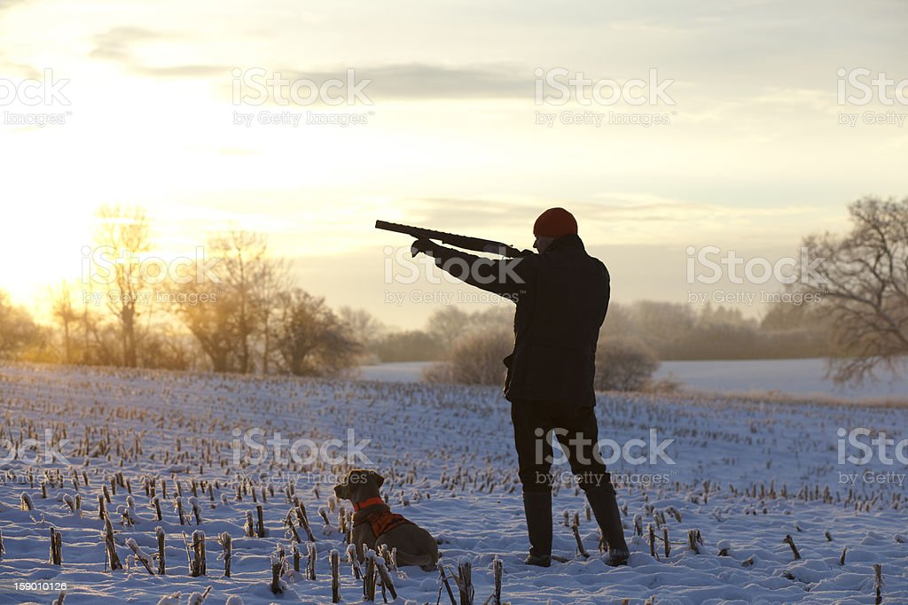 Young hunter with dog during the sunset stock photo