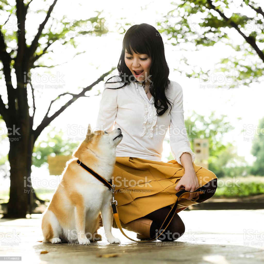 Young Japanese Woman Crouching to Pet a Dog stock photo
