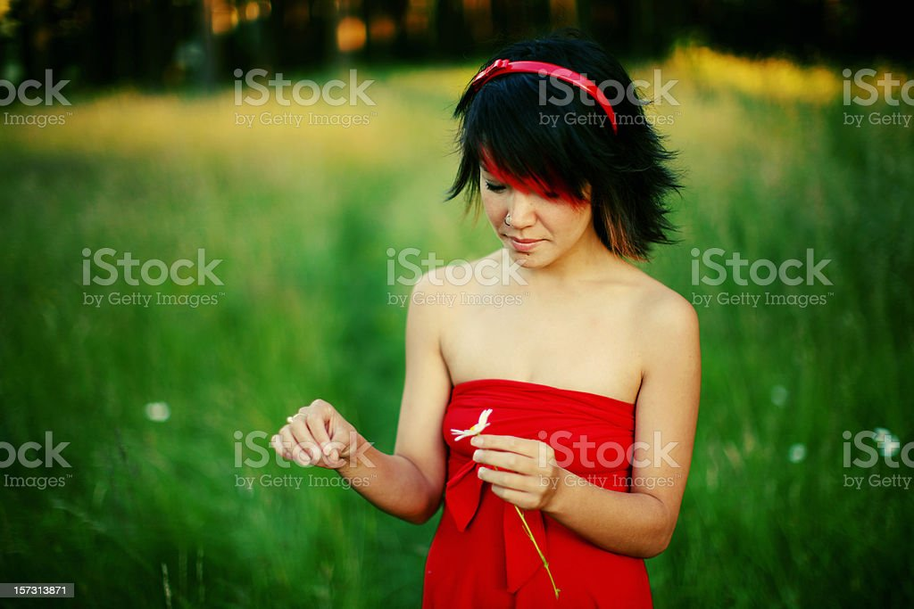 Young Korean Woman Plucking Pedals royalty-free stock photo