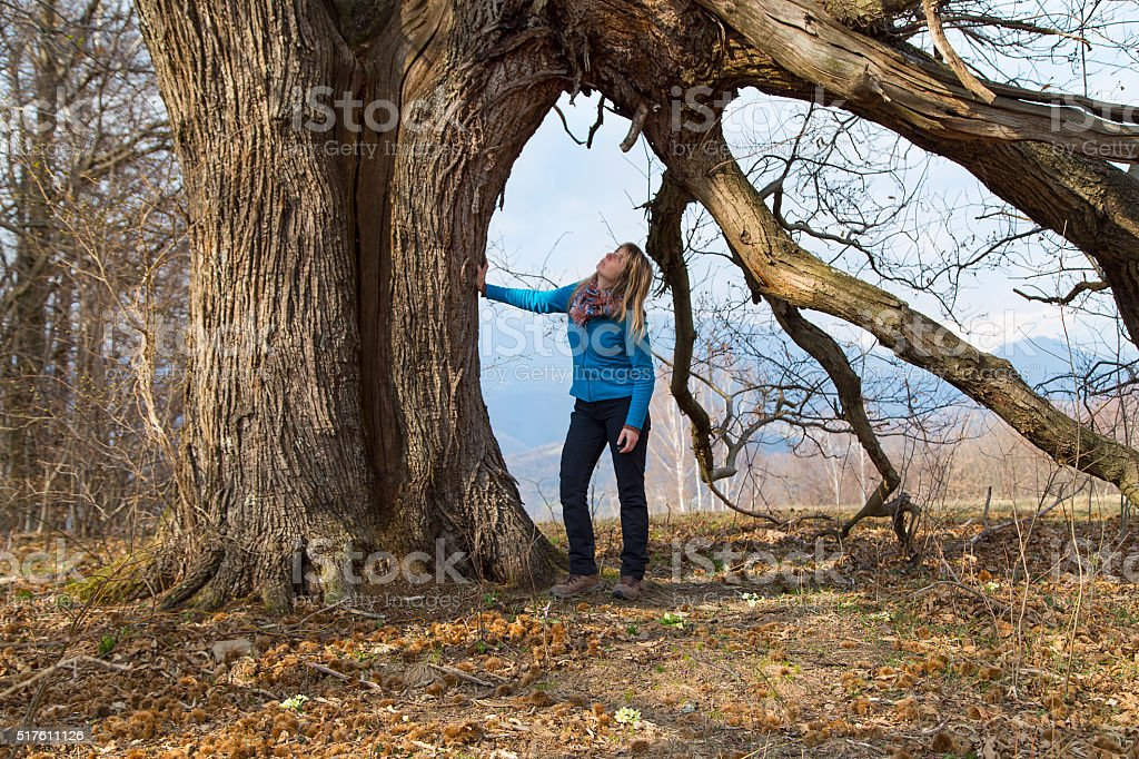 Young lady under the giant chestnut tree stock photo