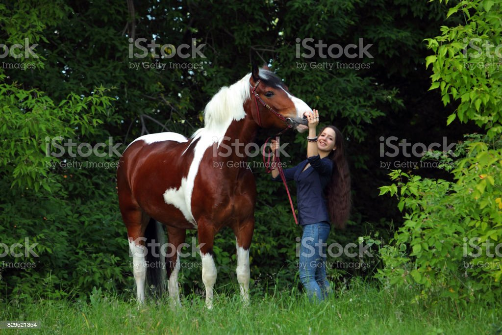 Young lady with her Vanner horse walking stock photo