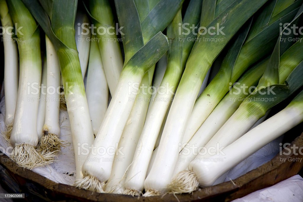 Young leeks royalty-free stock photo