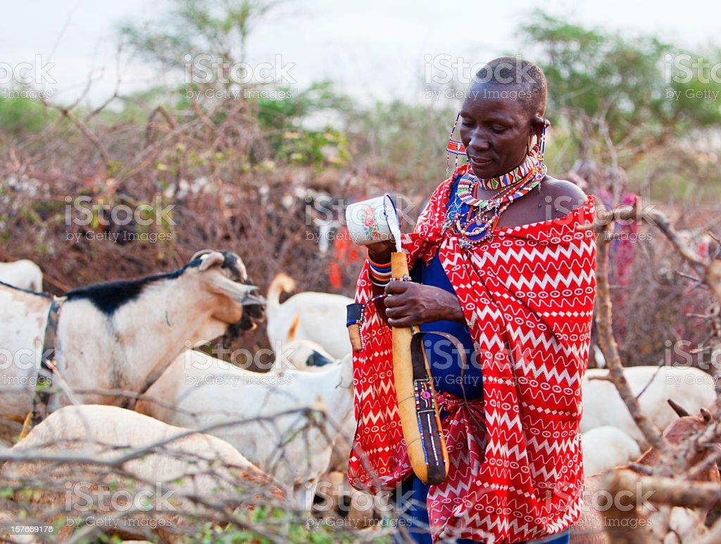 Young Maasai woman pouring goats milk into calabash stock photo