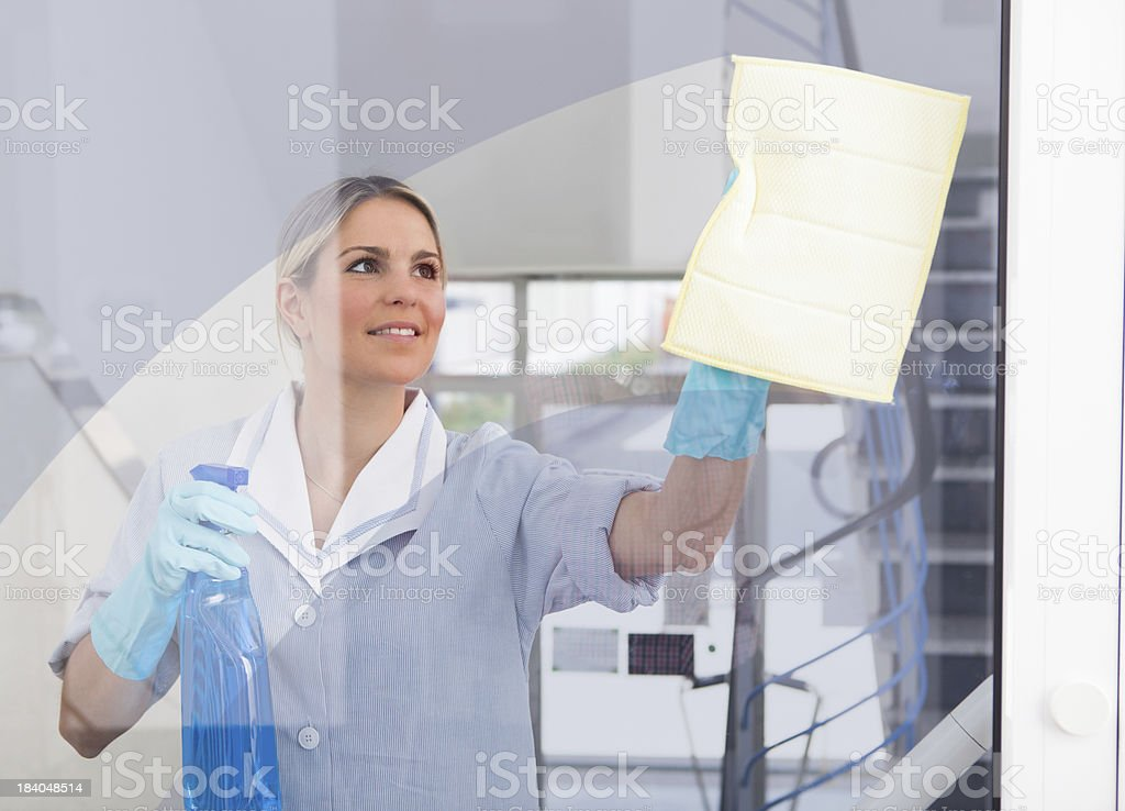 Young Maid With Bottle And Sponge stock photo