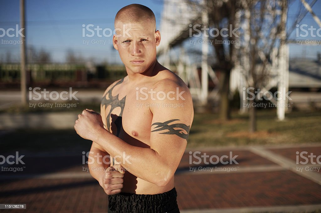 young male boxer portraits stock photo