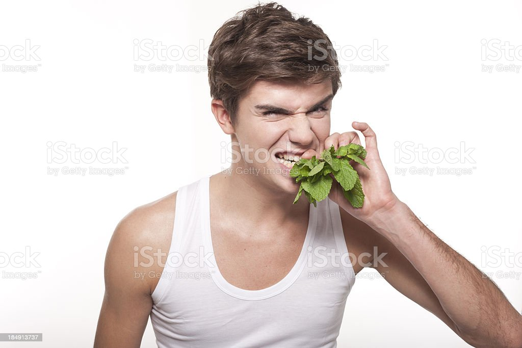 young male holding mint leaves in his mouth royalty-free stock photo