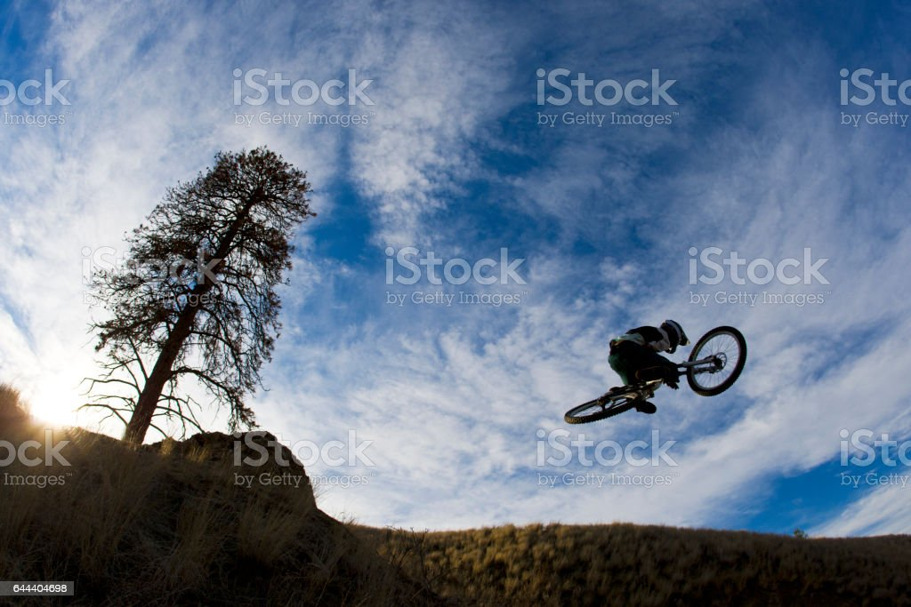 A young male mountain bike rider hits a jump at the end of the day. stock photo