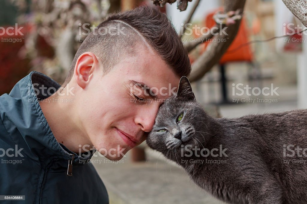 Young man and cat making friends - color version stock photo