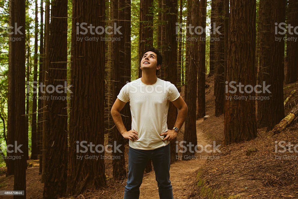Young man at redwood forest stock photo