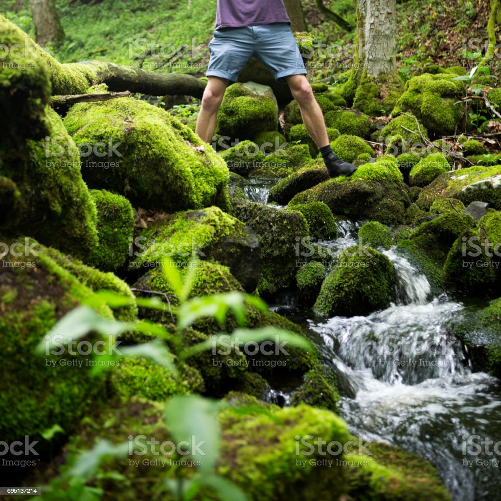 young man crossing a creek in green forest stock photo