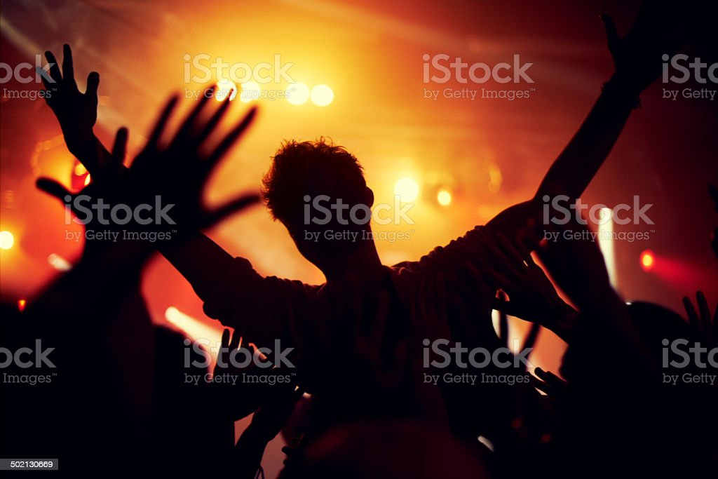 It's not a concert until somebody surfs the crowd stock photo