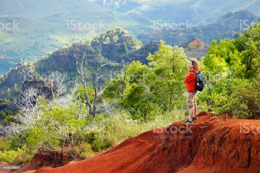 Young man enjoying a view into Waimea Canyon stock photo