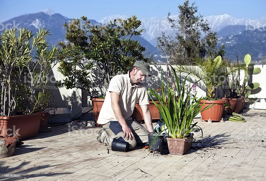 young man gardening royalty-free stock photo