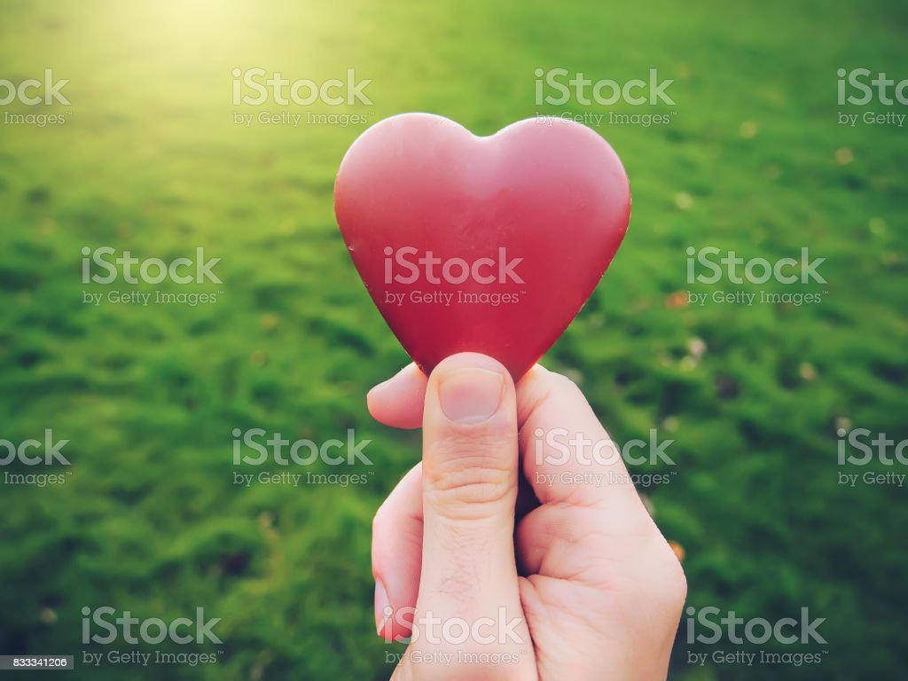 Young man hand holding heart shape stock photo