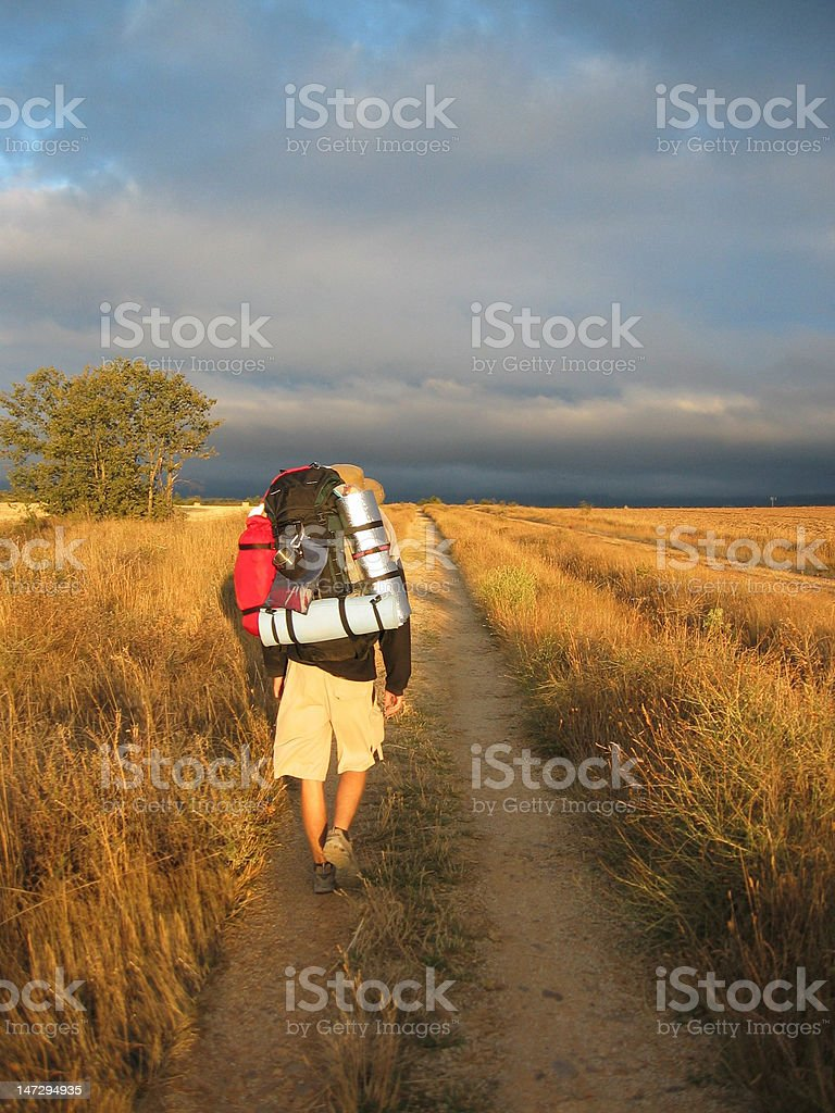 Young man hiking with backpack stock photo