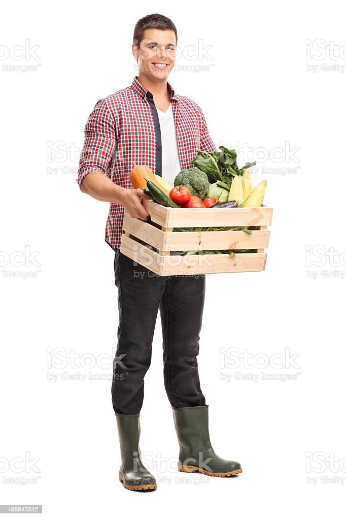 Young man holding a crate full of vegetables stock photo