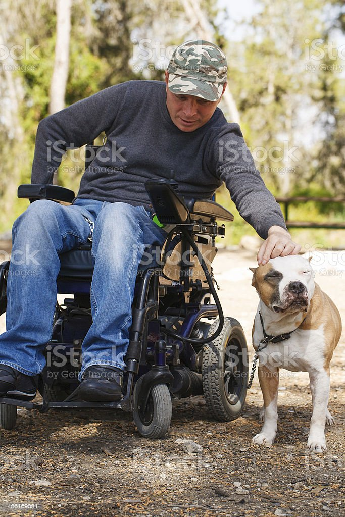 Young man in a wheelchair with his faithful dog . stock photo