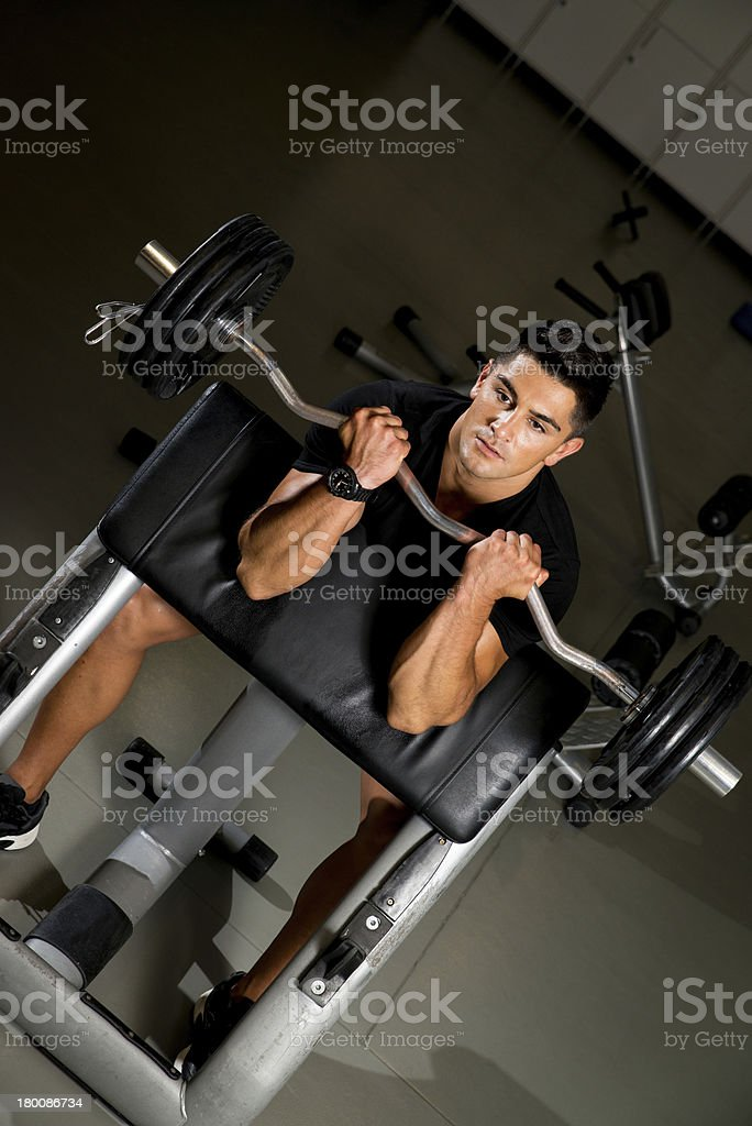 Young man in the gym exercising biceps with barbell royalty-free stock photo