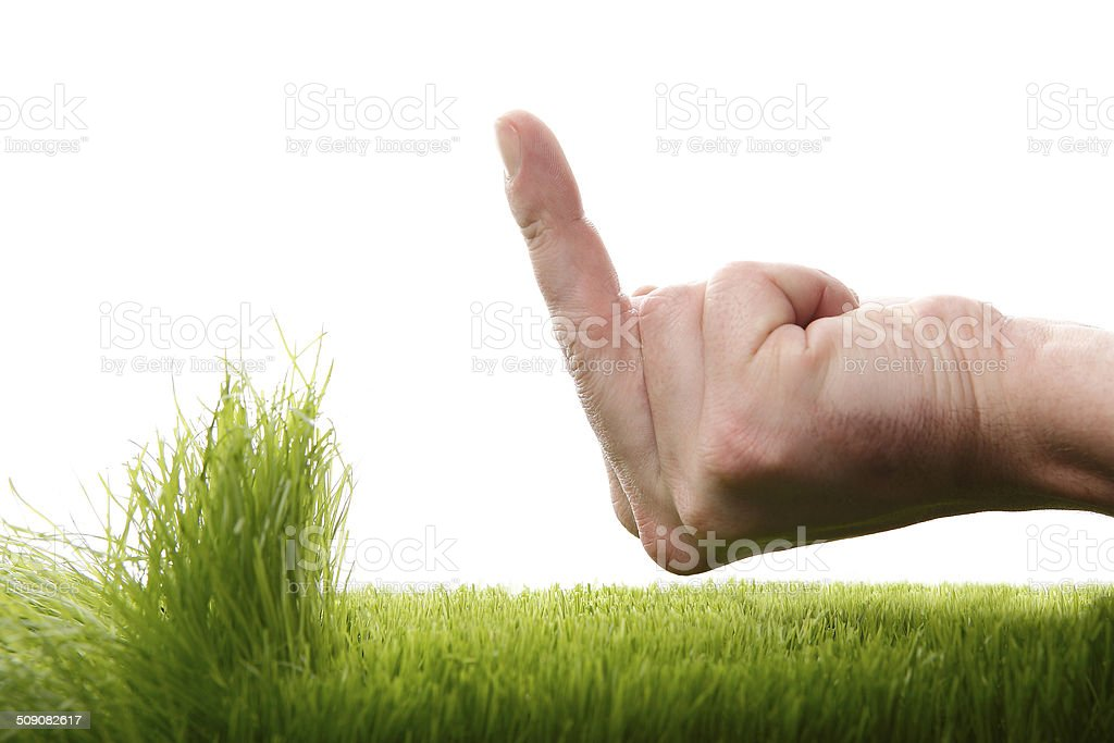 Young man is annoyed about growing grass stock photo