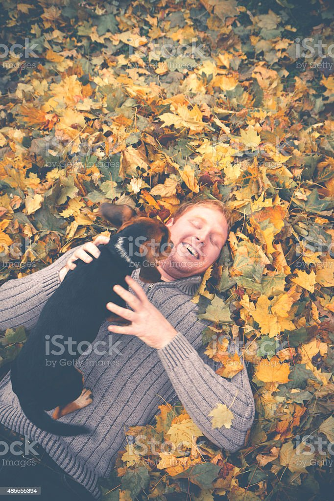 Young Man Laying Leaves Playing With His Beagle Pup stock photo