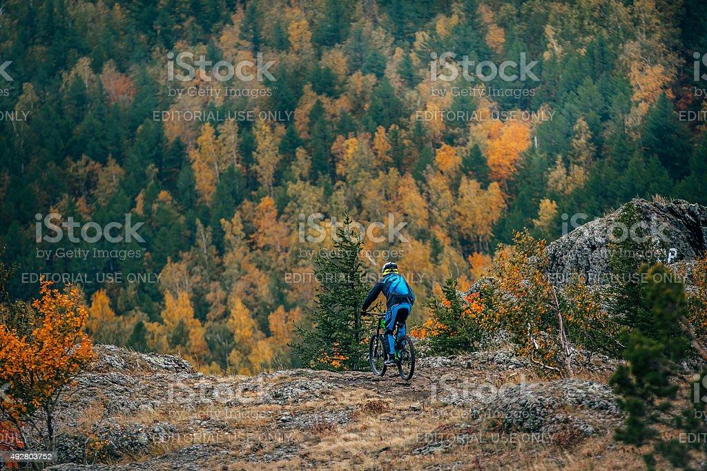 젊은 남자 on 산악 자전거 royalty-free 스톡 사진