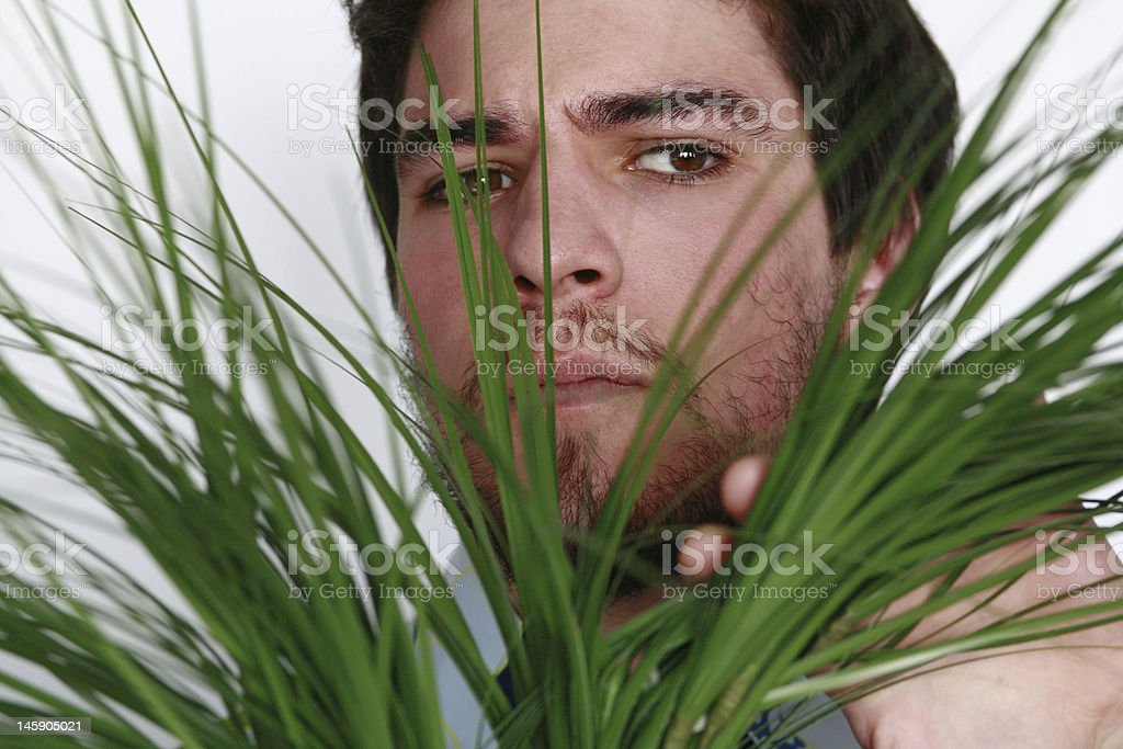 Young man peaking through plant. stock photo