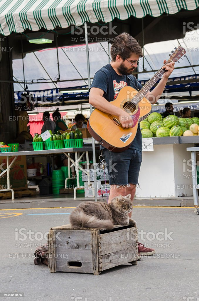 Young man playing guitar with cat stock photo