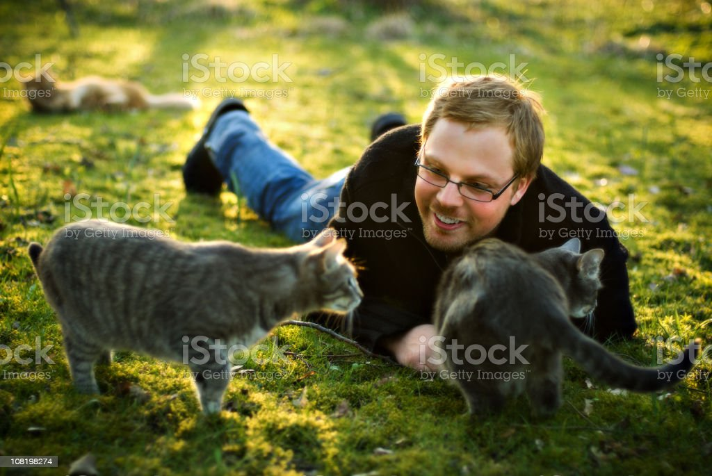 Young Man Playing With Cats royalty-free stock photo