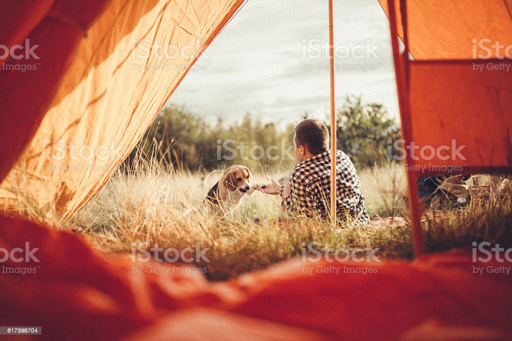 Young man playing with dog stock photo