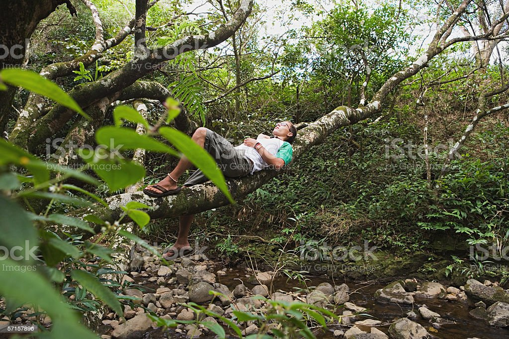 Young man resting on tree branch stock photo