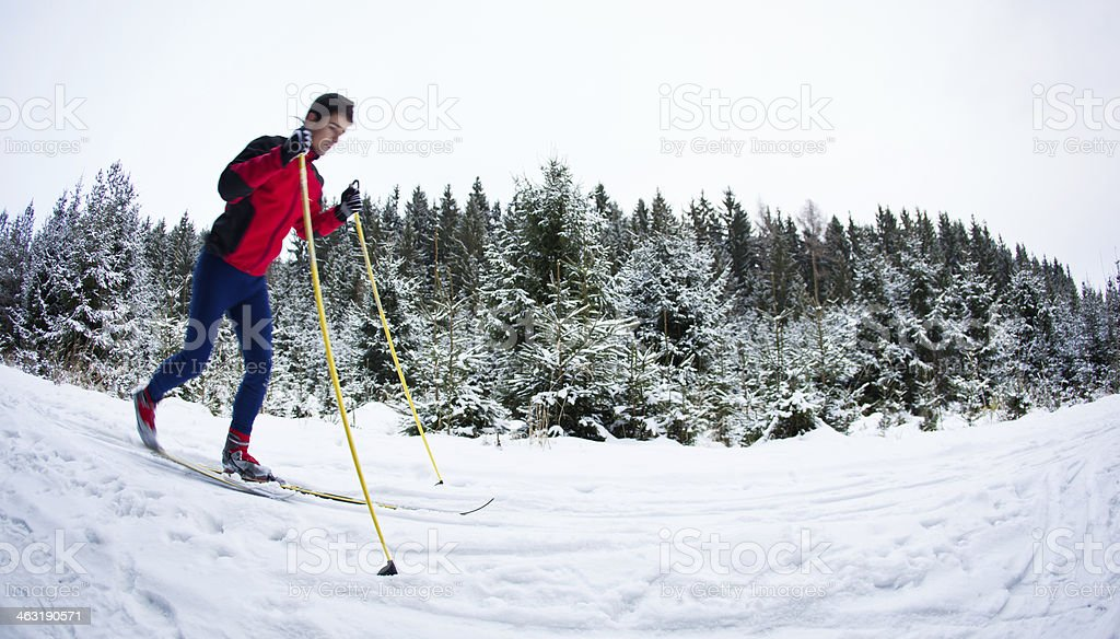 Young man skiing on a snowy forest trail stock photo