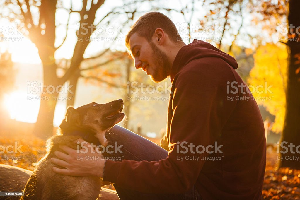 young man strokes his small Mixed-breed dog stock photo