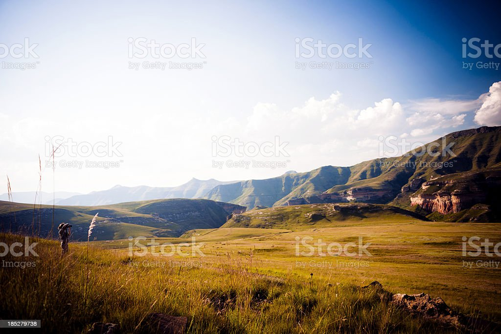 Young man taking pictures on safari stock photo