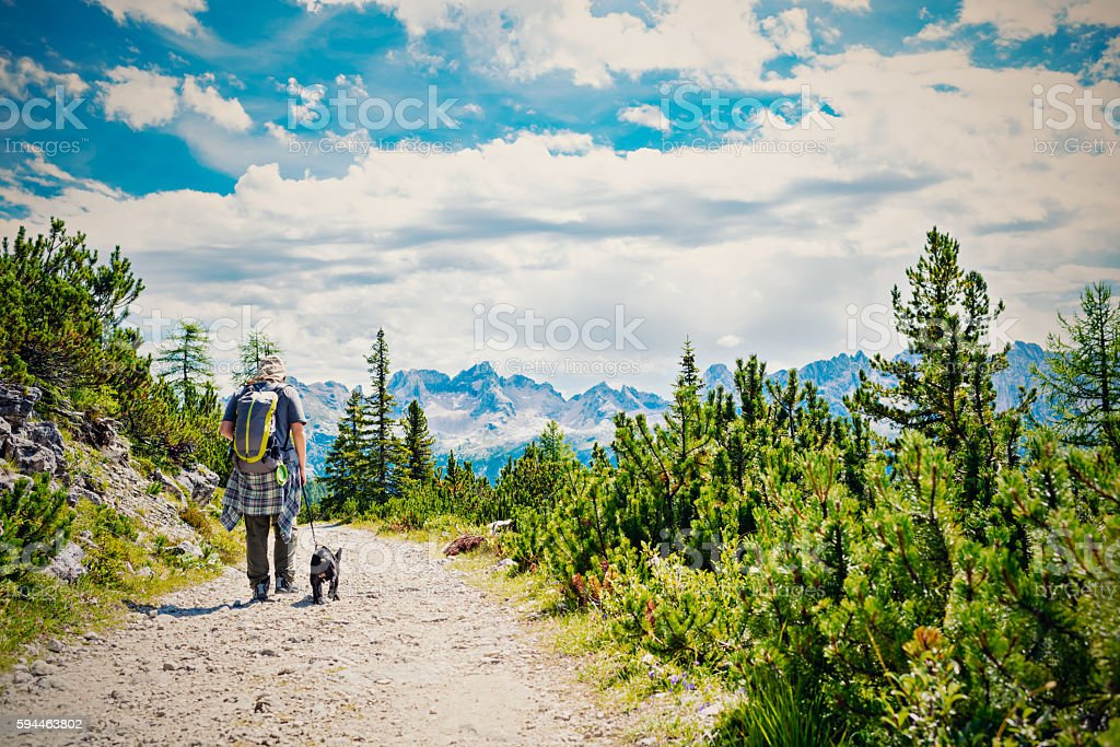 Young man walking with dog at mountain pass, Dolomities stock photo