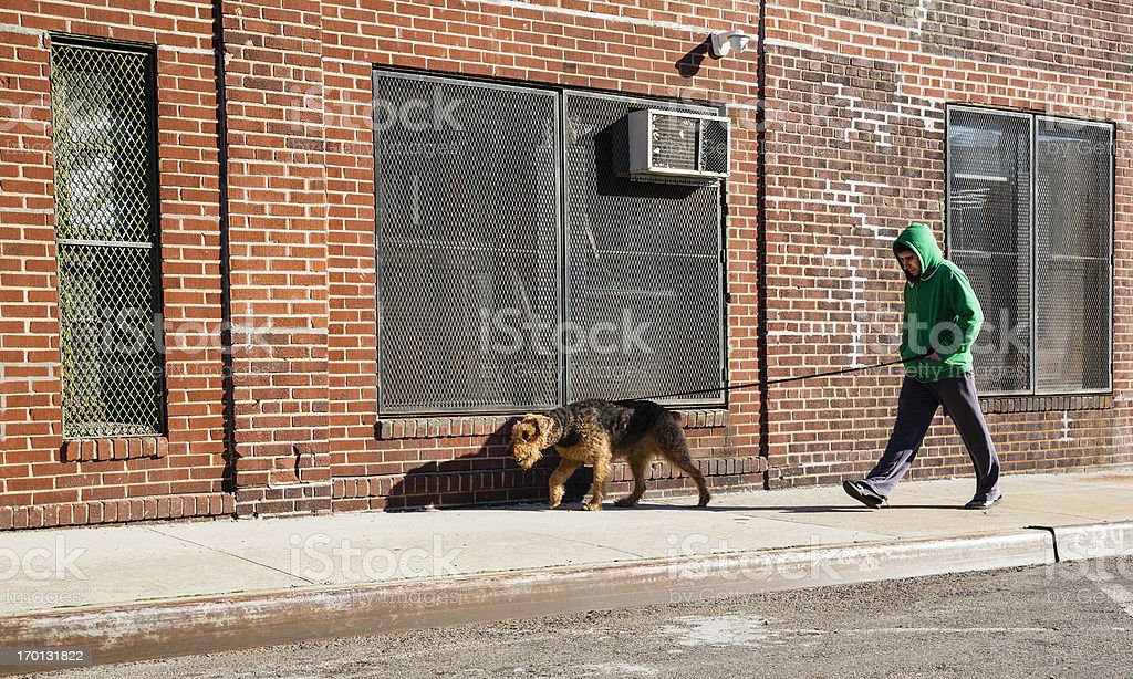 Young man walks dog royalty-free stock photo