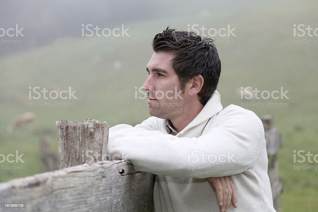 Young man wearing warm clothes looking at animals in field stock photo