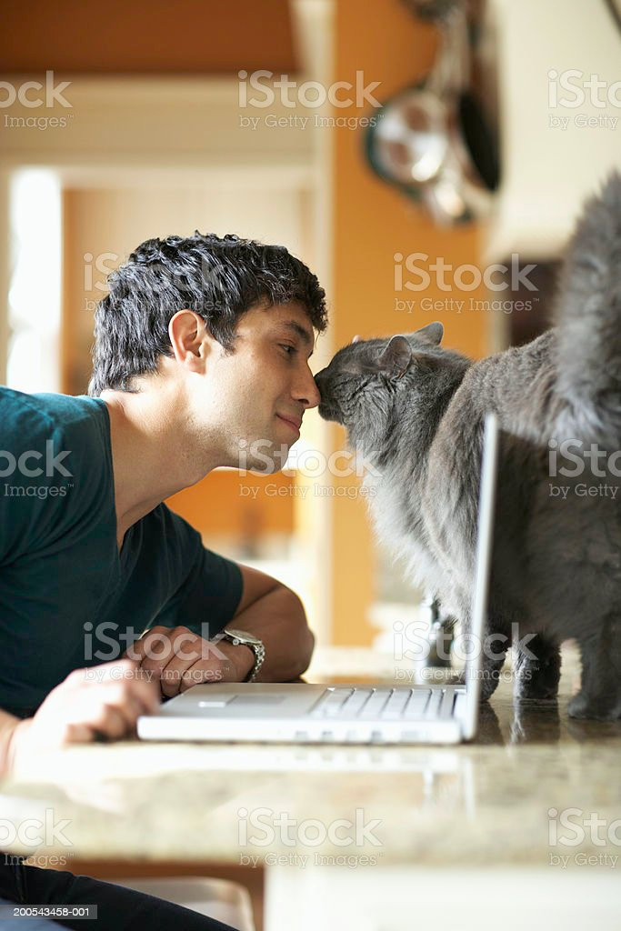 Young man with laptop and cat nose to nose, side view stock photo