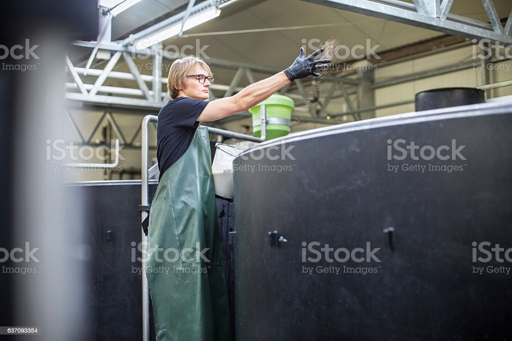 Young man working at fish hatchery farm stock photo