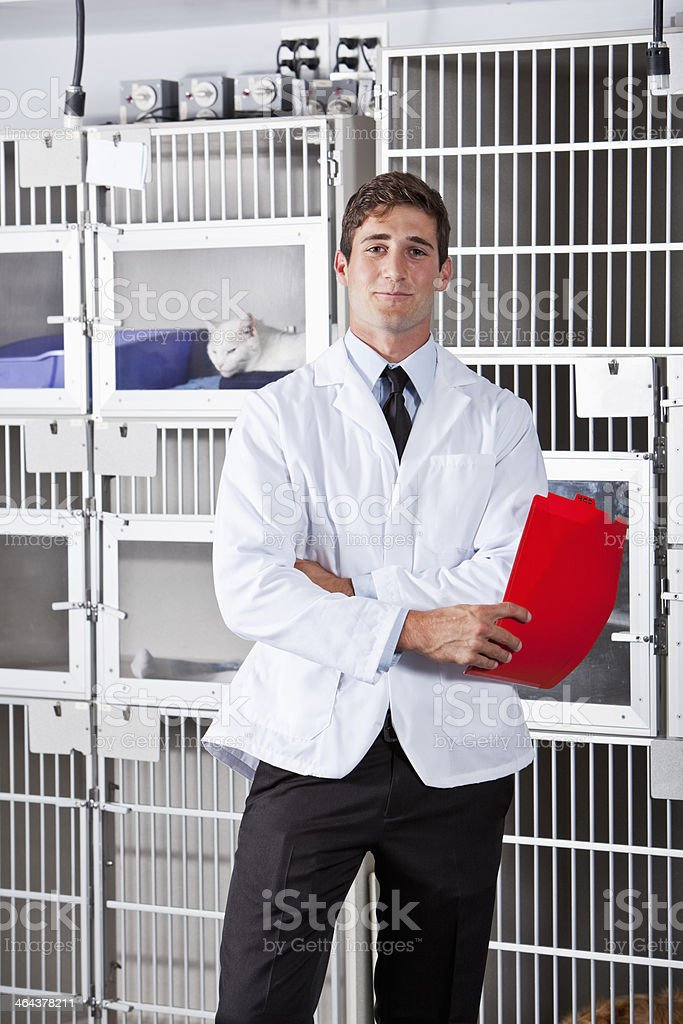 Young man working in animal clinic stock photo