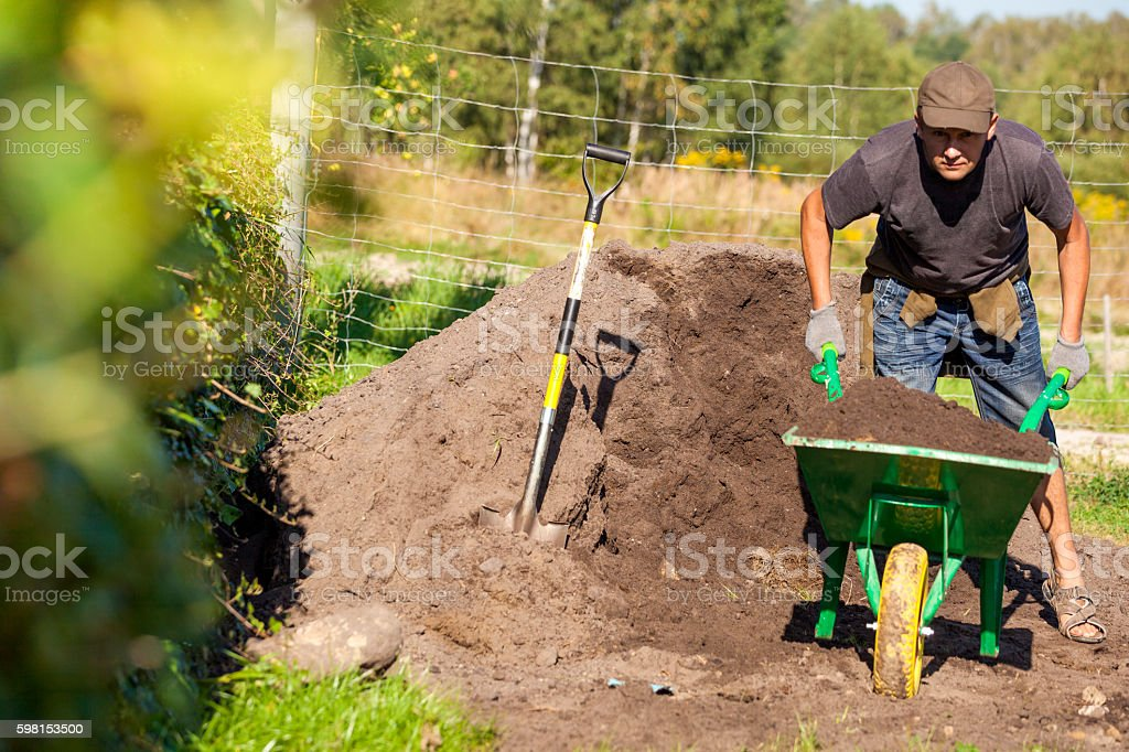 young man working in the garden stock photo