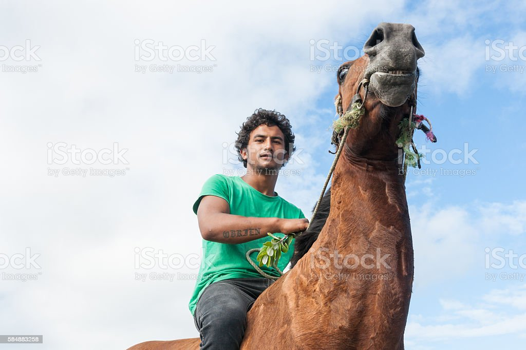 Young Maori male on brown horse stock photo