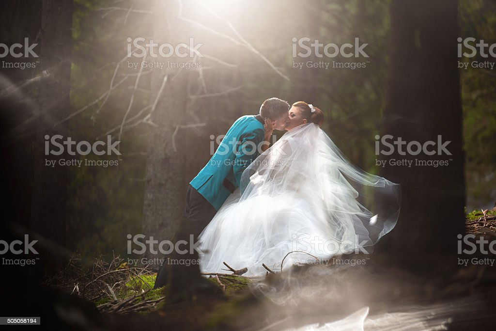 young married couple kissing stock photo