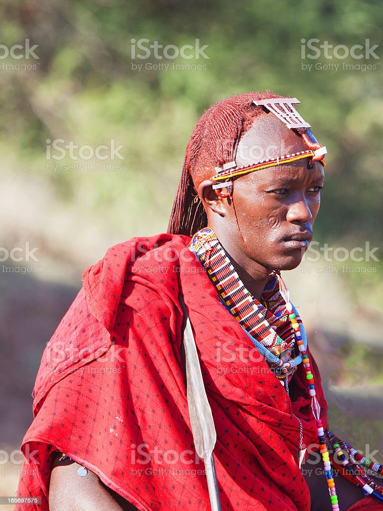Young masai morani (warrior) with traditional jewellry and long hair. royalty-free stock photo