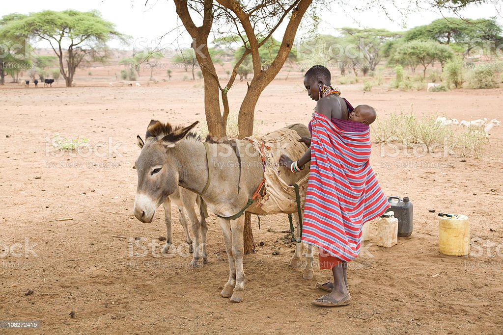 Young masai woman with baby on her back loading donkey royalty-free stock photo