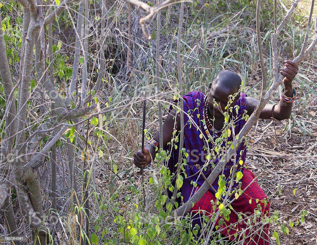 Young masaj cutting his way through bush with machete. stock photo