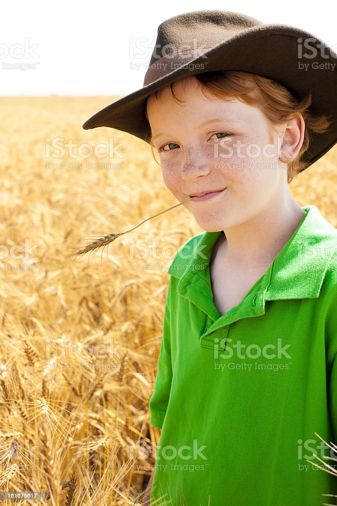 Young Midwestern  Cowboy Stands in Wheat Field on Farm stock photo