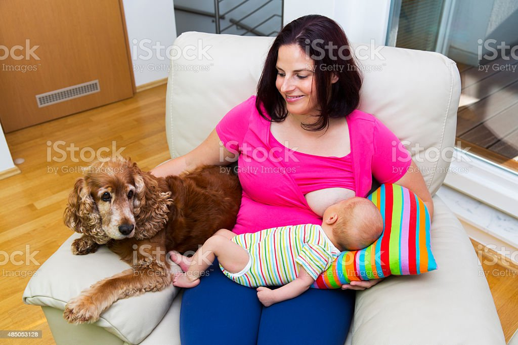 Young mother breastfeeding her little newborn boy stock photo
